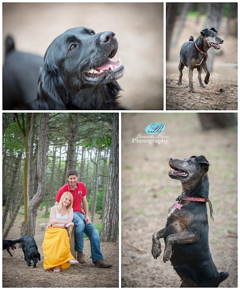 Pre Wedding Photography SG_0259