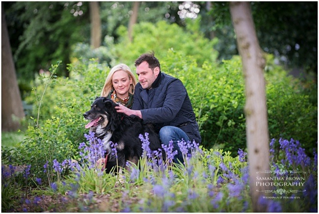 Dog photography in Liverpool by Samantha Brown Photography
