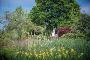 Bride and groom in a field of yellow iris